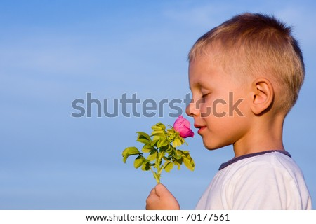 3 years old boy smelling rose flower in spring day. - stock photo