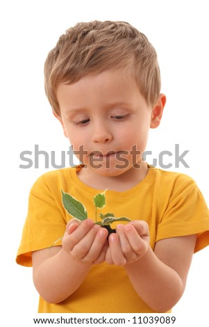 4-5 years old boy with green plant isolated on white - stock photo