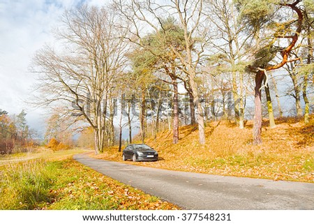 14.11.2015 - Zahradky, Czech republic - Parking under autumnal trees by the roadside during the autumn tourist season