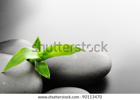 zen stones and  bamboo on the black - stock photo