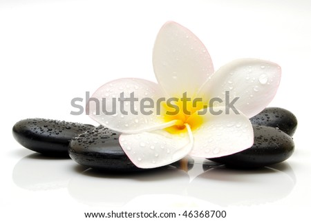 zen stones with frangipani flower - stock photo