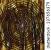 A abstract figure looks like the iron spider web (handmade digital painting by me, 3d, science fiction) - stock photo