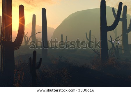 A awesome sunset in the desert - stock photo