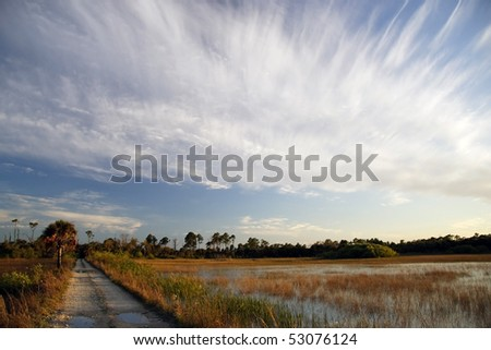 A backcountry trail crosses a golden Everglades prairie, Big Cypress National Preserve - stock photo