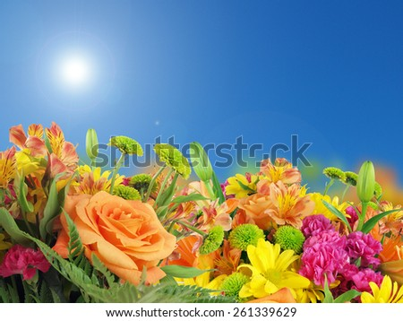 a background image of flowers consisting of irises, roses, petunias, and daisies under a sunny blue sky. - stock photo