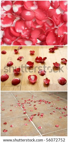 a background image of rose petals on the floor