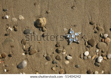 a background image of starfish on the sand