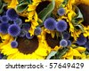 A background of allium and sunflowers on a market stall - stock vector
