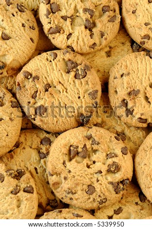 a background of delicious chocolate chip cookies - stock photo
