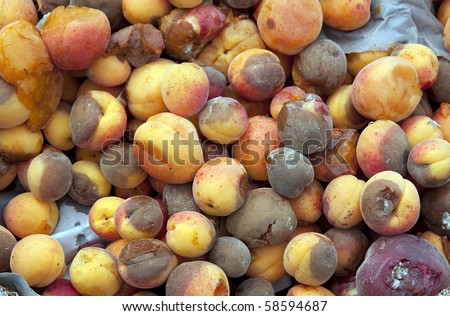 A background of discarded rotten fruit left for waste after a market. Peaches and apricots. - stock photo
