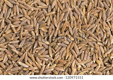A background of dried cumin seeds - stock photo