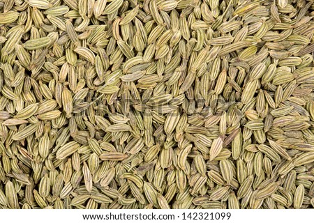 A background of dried fennel seeds. - stock photo