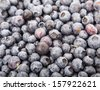 A background of fresh, ripe, juicy blueberries - stock photo
