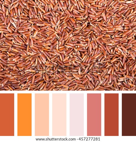 A background of red Camargue rice In a colour palette with complimentary colour swatches. - stock photo