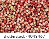 A background of wild cloudberries - stock photo