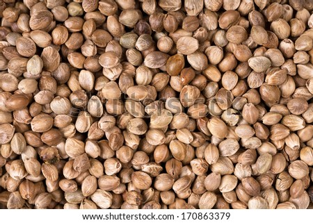 A background texture of dried hemp seeds - stock photo
