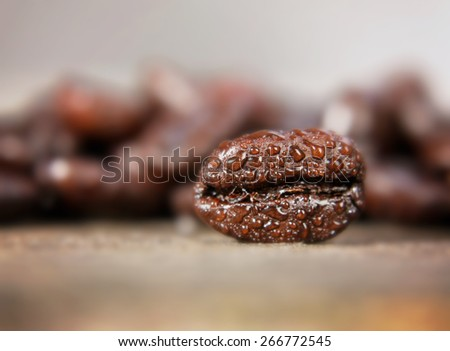 a background with coffee beans in macro (extremely shallow depth of field) close up - stock photo