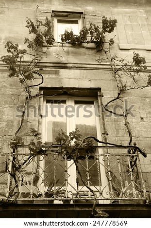 A  balcony of old house overgrown with grapevine. Arles (Provence, France). Aged photo. Sepia.   - stock photo