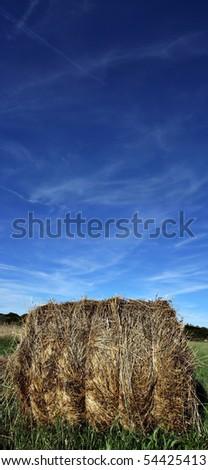 a bale in a beautiful field - stock photo
