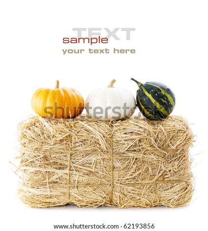 A bale of hay and pumpkins over white (with sample text) - stock photo