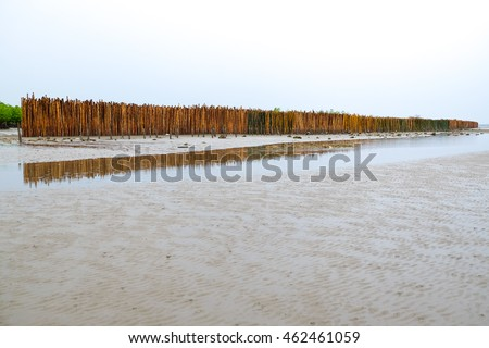 A bamboo wall to protect seaside/ shore from the wave