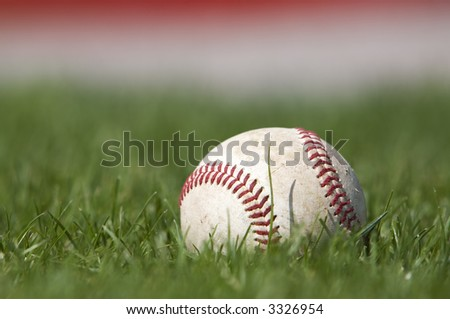 A baseball sitting in the grass (shallow dof)