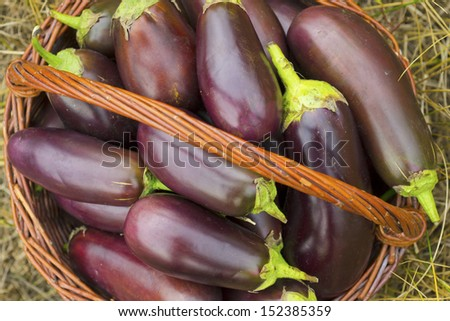 a basket of eggplants