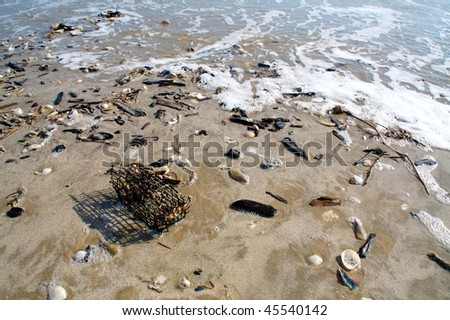 A beach at low tide, littered with shells, driftwood, and a metal cage - stock photo