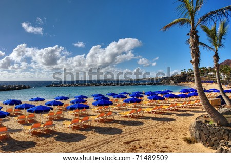 A beach at Playa Blanca, Lanzarote, in the Spanish Canary Islands, with sunbeds, parasols and a Palm - stock photo