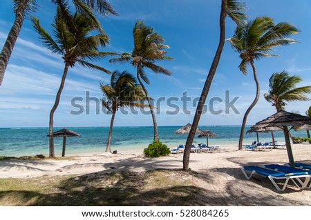 A beach with white sand and blue water in Antigua