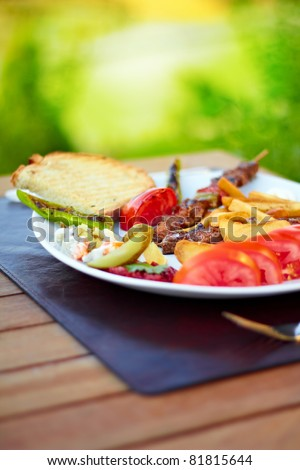 A beatiful Turkish shish kebab plate with nature scene in the background. - stock photo