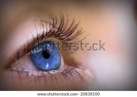 a beautiful blue eye - stock photo