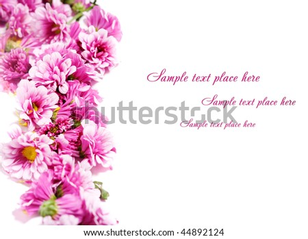 A beautiful border from pink flowers on a white background