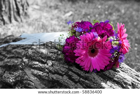 A beautiful, bridal bouquet left sitting on a tree trunk.  Black and white image with color tinted flowers. - stock photo