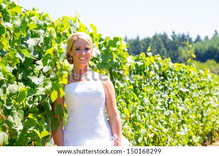 A beautiful bride wearing her wedding dress on her special day at a vineyard outdoors in Oregon during the summer. - stock photo