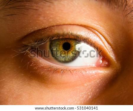Blue Eye Reflected Water Stock Photo 2537004 - Shutterstock