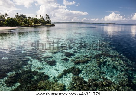 A beautiful coral reef drops into deep water near a resort off the southern coast of Sulawesi, Indonesia. This area is part of the Coral Triangle and harbors extraordinary marine biodiversity.