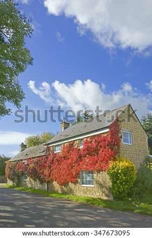 A beautiful Cotswold country cottage covered in vine in Autumn in the Gloucestershire countryside, England, United Kingdom
