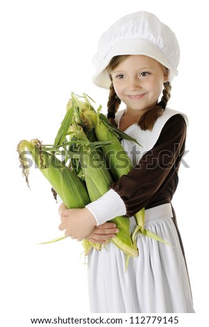 A beautiful elementary Pilgrim girl happily carrying an armload of fresh corn.  On a white background. - stock photo