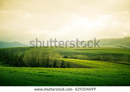 A beautiful field scenery of Slovakia. Warm summer haze, colorful contrast look.