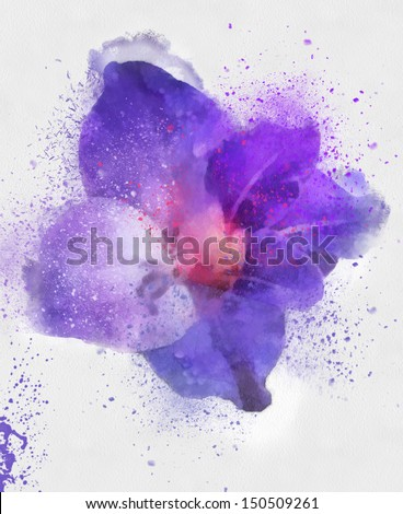 a beautiful flower - stock photo