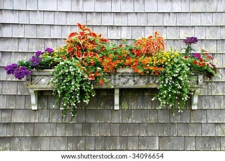 A beautiful garden window box planted with a variety of summer flowers. - stock photo