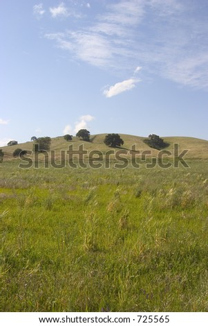 A beautiful green medow in northern California. - stock photo