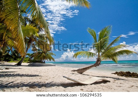 A beautiful image of caribbean paradise - Nature - stock photo