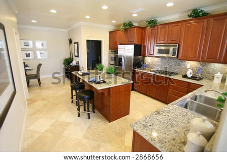 A beautiful kitchen interior inside an upscale home