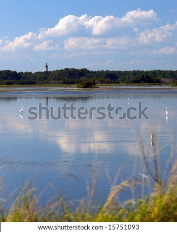 A beautiful lake filled with birds with a forest and lighthouse in the distance