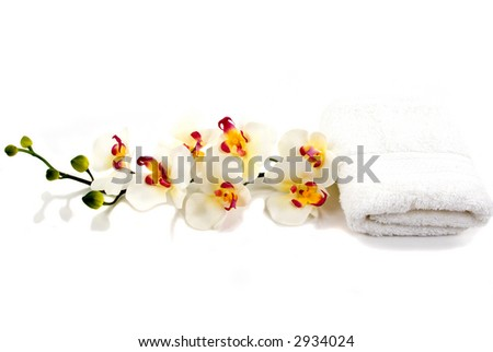 A beautiful orchid and towel - stock photo