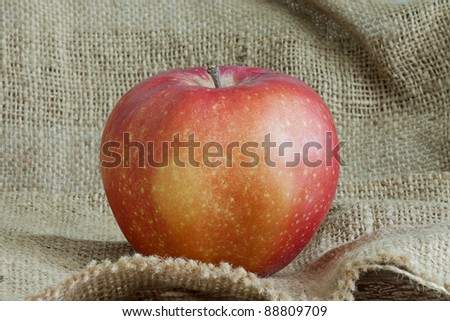 a beautiful red apple on canvas bag - stock photo