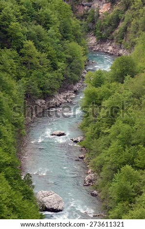 A beautiful river flowing in a gorge in the countryside of Montenegro. - stock photo
