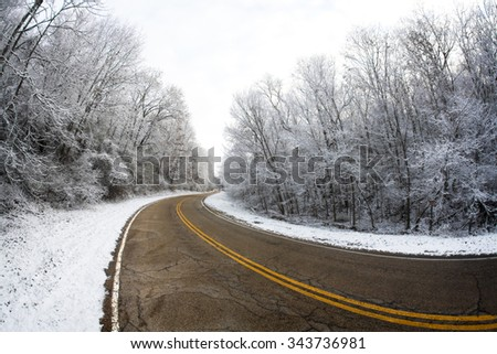 A beautiful rural road lined with snow covered trees. - stock photo